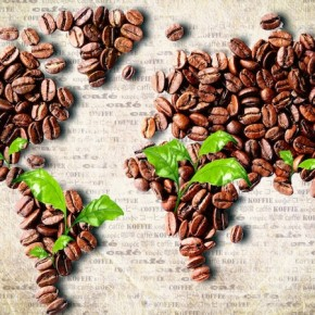 coffee-beans-world-map-290x290.jpg